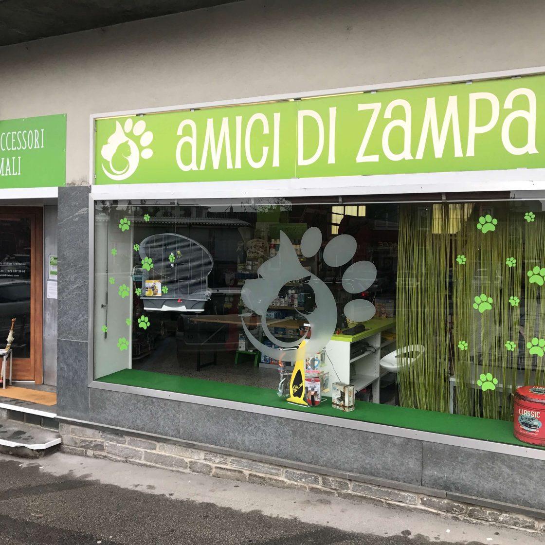 Amici  Zampa